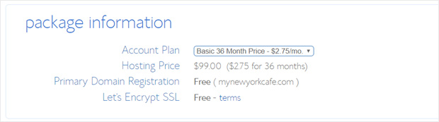 bluehost-basic-plan-package-information