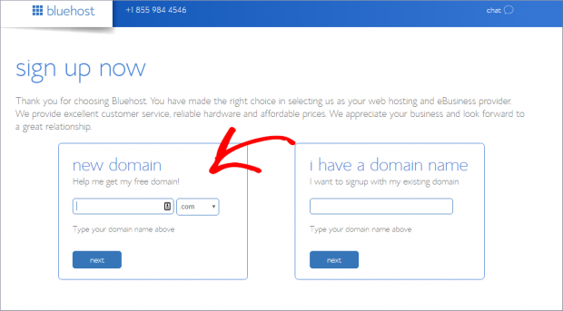 bluehost-domain-how-to-start-a-small-business-site